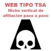 curso de TSA nicho vertical