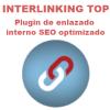 Interlinking Top