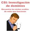 Curso de CSI: Investigación de Dominios